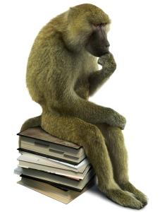 Die Evolutionstheorie besagt nicht, dass wir vom Affen abstammen; es ist etwas komplizierter