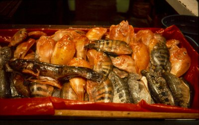 Fischmarkt Nica