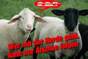 Quelle:ffn.de