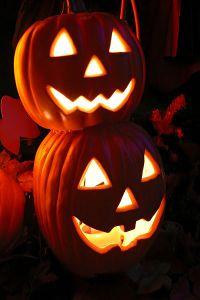 Halloween : Kürbisse (GFDL-Lizenz auf Wiki Commons von 663highland)