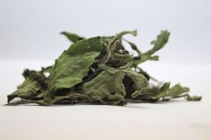 Stevia getrocknet
