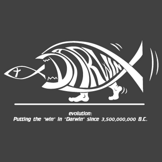 darwin fish win