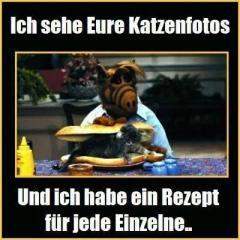 alf_katzen