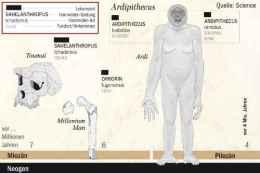 Die Menschheitsgeschichte in Funden: Im Tschad wurden Überreste unserer frühesten Verwandten entdeckt. Foto: Infografik WELT ONLINE, Christian Schlippes