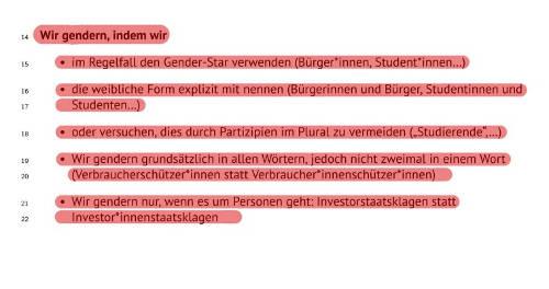Auszug aus dem Antragsbuch der Grünen: Der Gender-Star ist da. BÜNDNIS 90/DIE GRÜNEN. Screenshot: bb